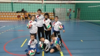 M11, M9, Ecole de Volley du CJF Volley
